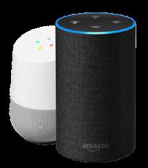 Google Home and Amazon Alexa